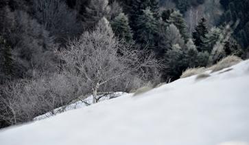 Monte San Primo -Triangolo Lariano